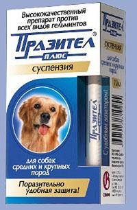 адвокат от глистов у собак